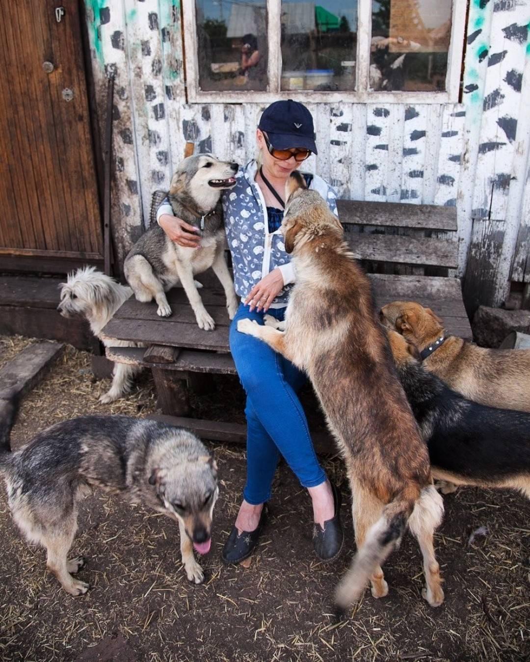 Как правильно отдать животное другому человеку?