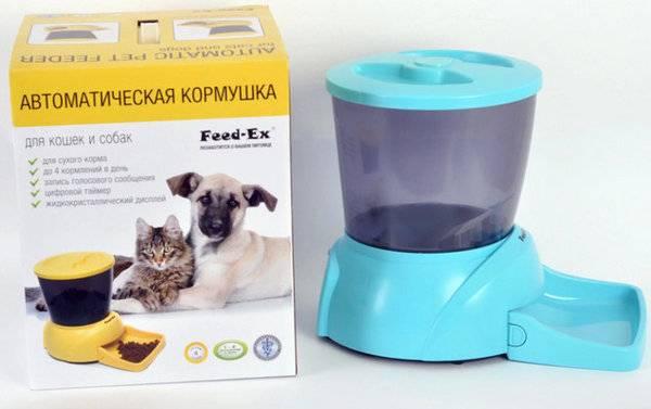 Автоматическая кормушка для собак и как она работает: рассматриваем по полочкам