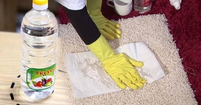 Как быстро избавиться от запаха мочи на ковре от собаки: лучшие методы