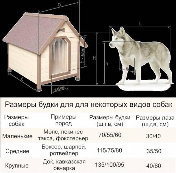 Собачьей будки для немецкой овчарки – sam-sdelay.ru – сделай сам!
