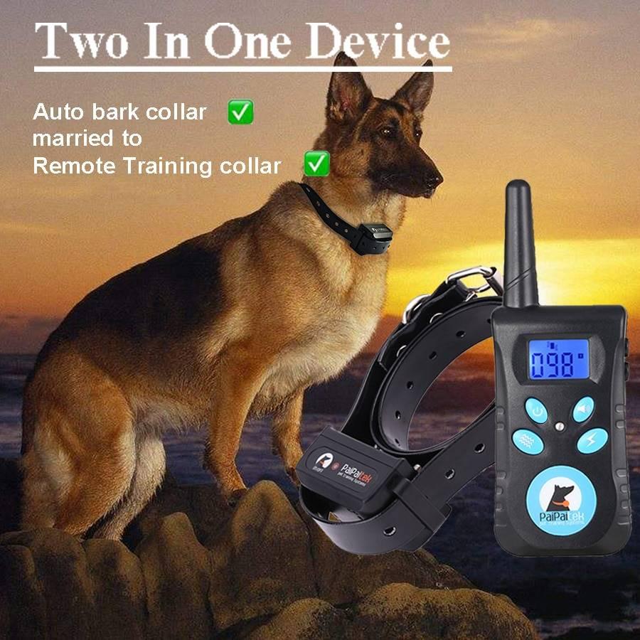 Плюсы и минусы ошейника с электрошоком для собак