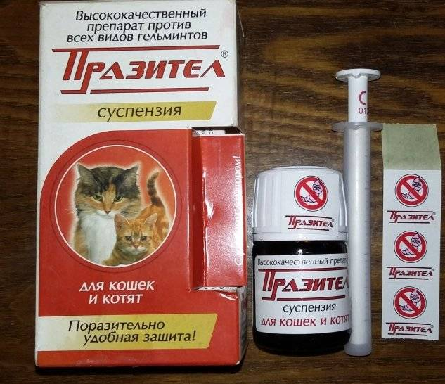 Quantel таблетки от глистов у животных: инструкция