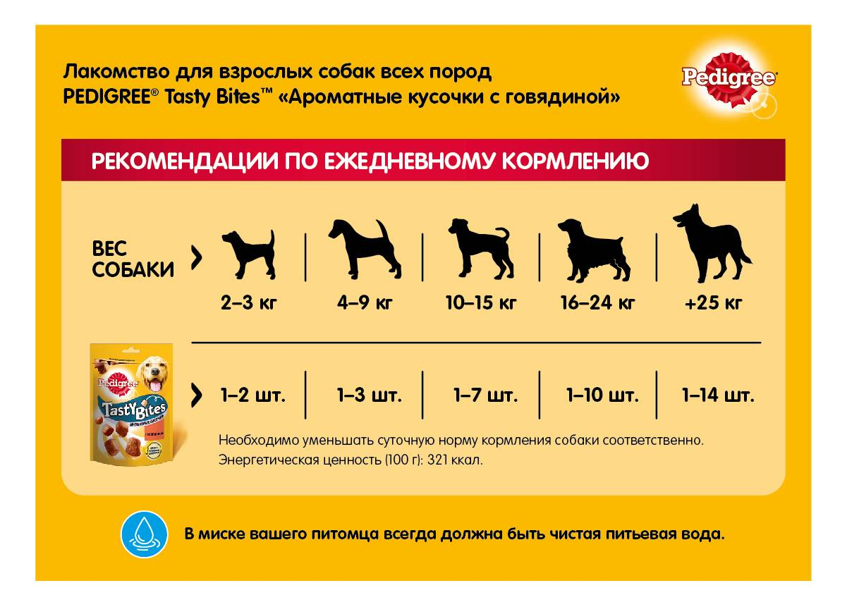 Куриные лапы для собак, а также головы: можно ли давать