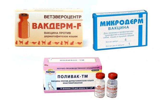 Вакцина вакдерм: инструкция по применению - вет-препараты