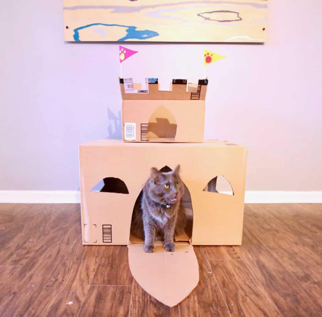 Как сделать домик для кошки своими руками — выбор конструкции, уникальные советы, идеи и фото примеры