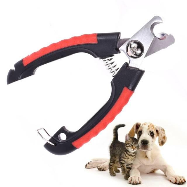 Как подстричь когти собаке? 38 фото как правильно подстригать когти в домашних условиях? как часто нужно их стричь? стрижка когтей щенкам. как выбрать когтерез?