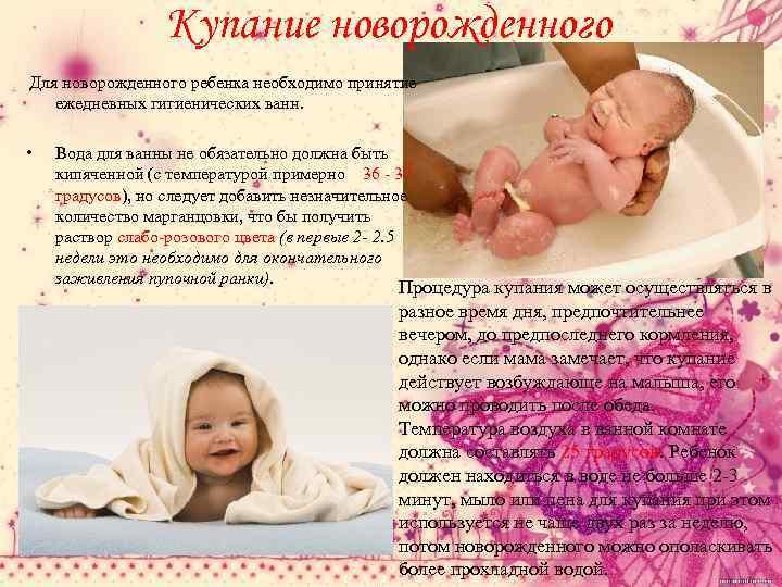 Уход за новорожденными щенками. уход за кормящей сукой и щенками