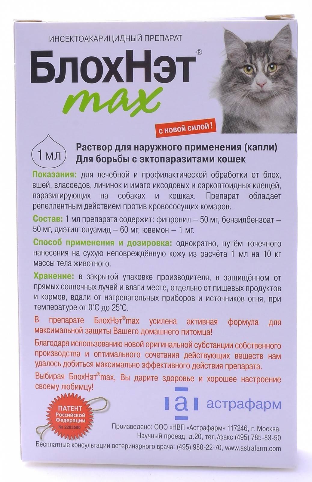 Средство от блох для котят 3 месяца: вывести блох у котенка с 3х месяцев | нвп «астрафарм»