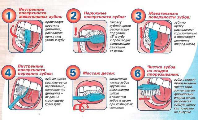 Как чистить зубы электрической зубной щеткой правильно