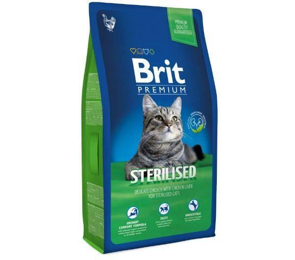 Советы ветеринаров, каким кормом кормить кошку — рейтинг + фото | знать про все