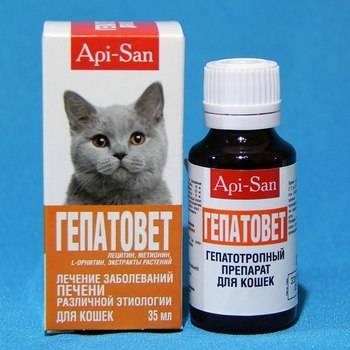 Гепатовет для кошек — инструкция по применению и показания, состав, форма выпуска и цена