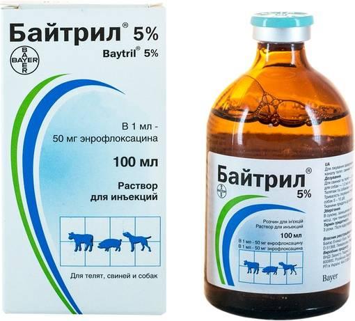 Ветеринарный байтрил. байтрил и другие препараты для цыплят бройлеров, инструкции применения. стоимость байтрила составляет - новая медицина