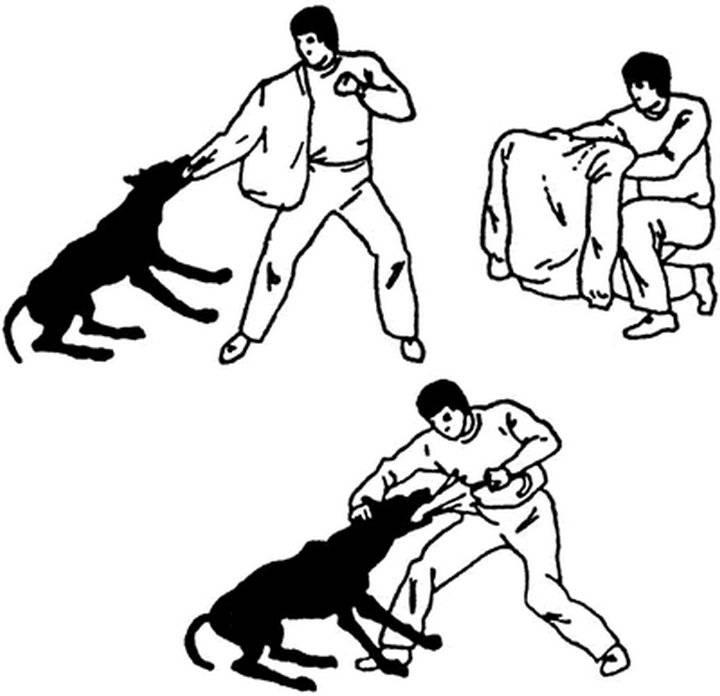 Как отучить собаку бросаться на людей.
