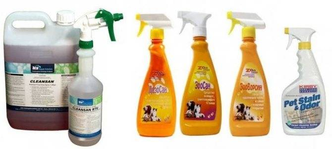 Обзор средств для устранения кошачьего запаха