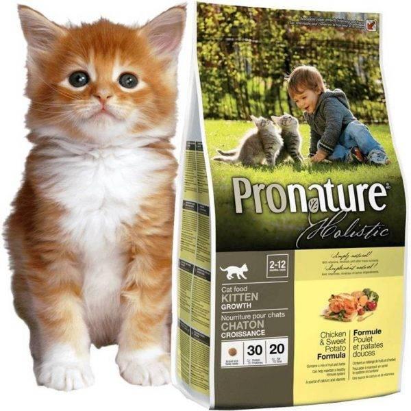 Корм для кошек farmina n&d: отзывы и разбор состава - петобзор