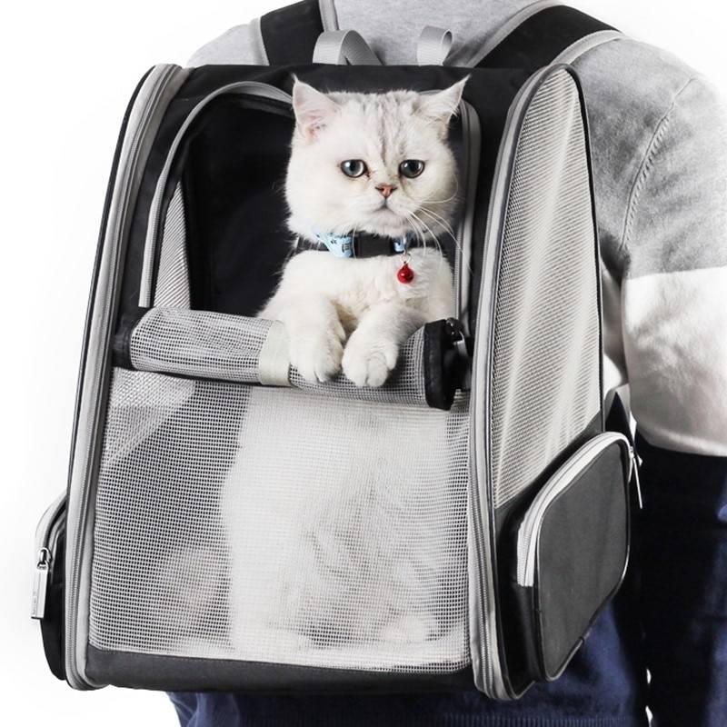 Виды рюкзаков. какие бывают рюкзаки? советы при выборе рюкзаков