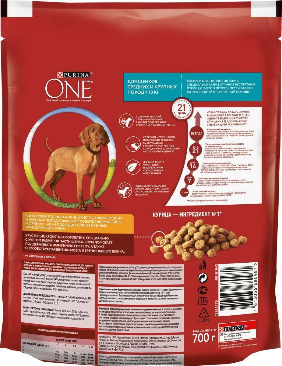 Рейтинг кормов для собак 2020 (по качеству)