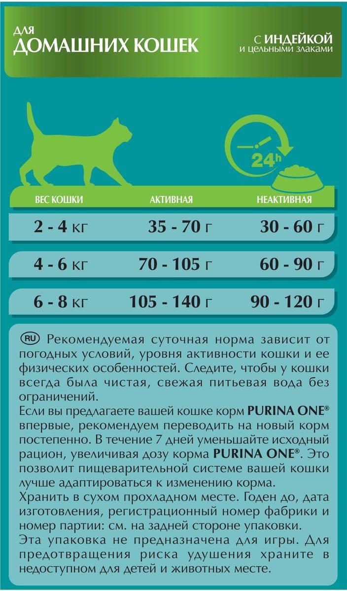 Классы кошачьих кормов – что они означают?
