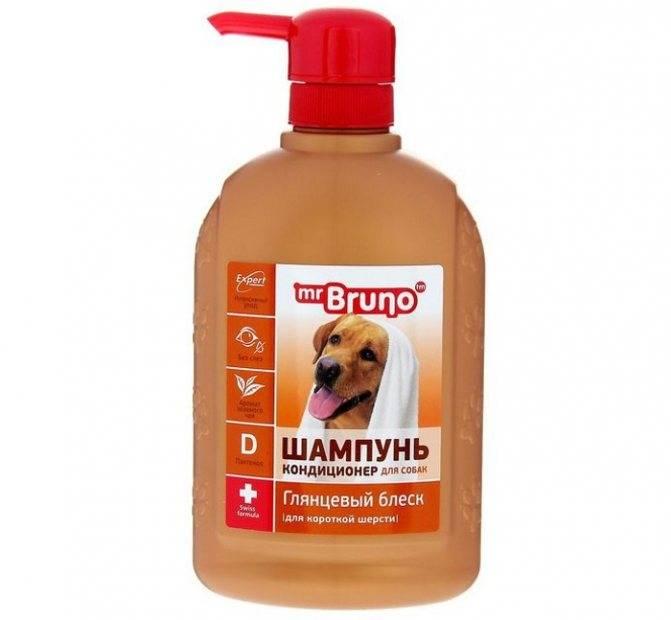 Как часто мыть собаку – советы и рекомендации