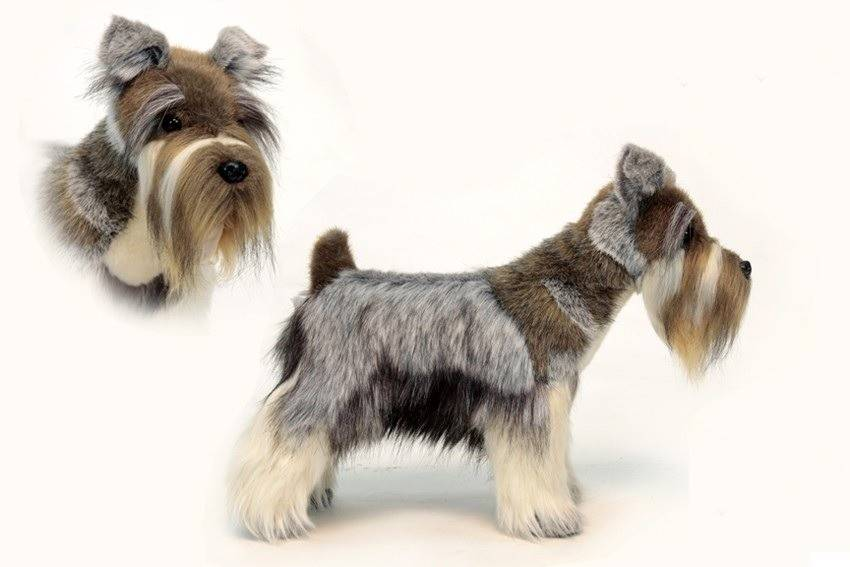 Инструменты для тримминга собак с описанием