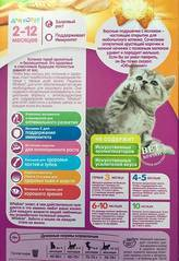 Как выходить новорожденных котят: советы ветврача