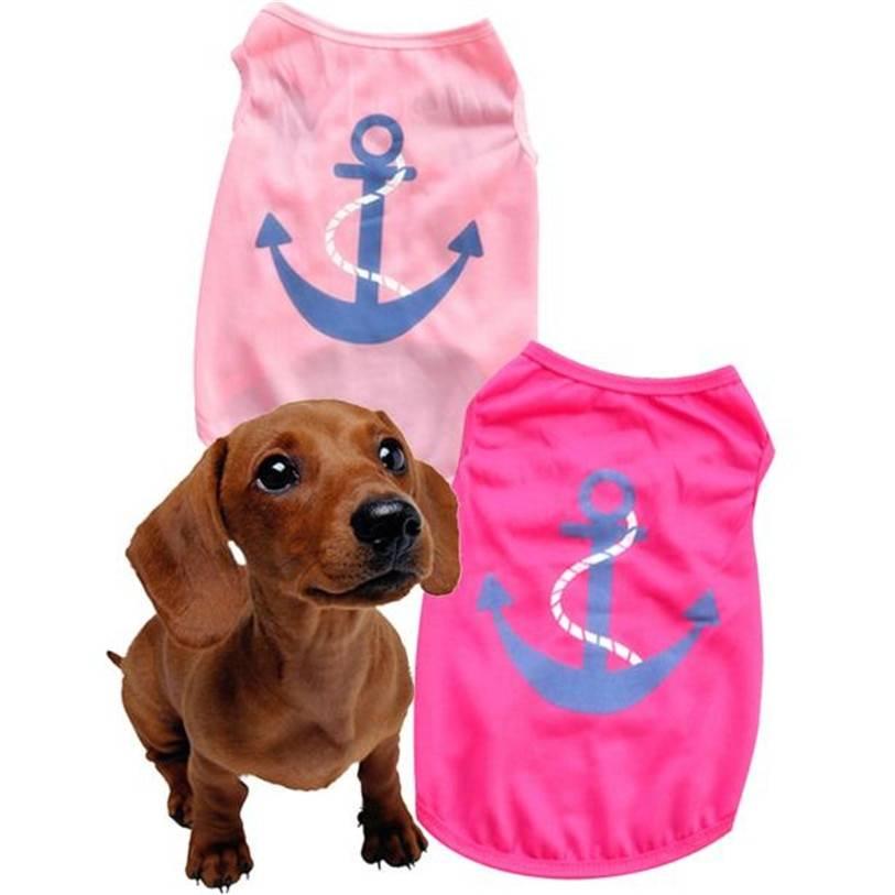 Одежда для собак: нужна ли, зачем