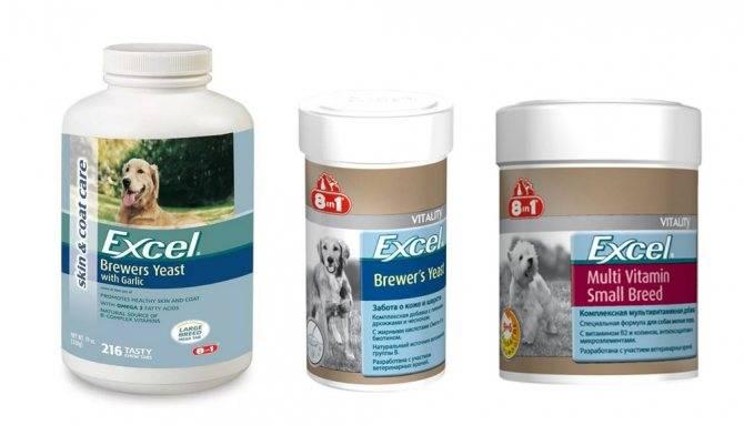 Комплекс витамин для собак для шерсти и кожи 8 в 1: правила применения биодобавки с высоким содержанием натуральных ингредиентов