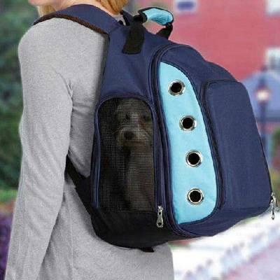10 лучших рюкзаков-кенгуру для новорожденных