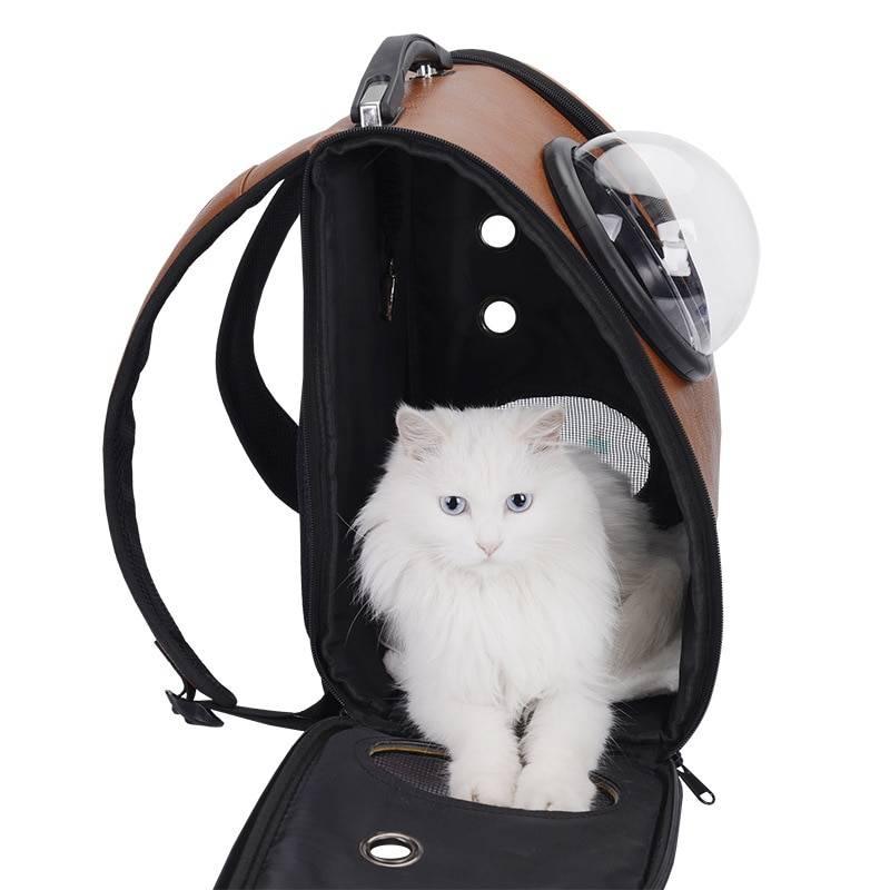 Лучшие переноски для кошек по отзывам покупателей