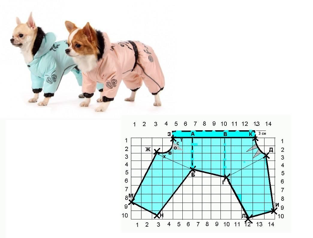 Одежда для собак своими руками для начинающих ? покрой костюмов для мелких собачек мальчиков и девочек