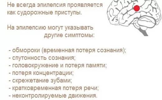 Эпилепсия у кошек: виды, признаки, симптомы, варианты лечения