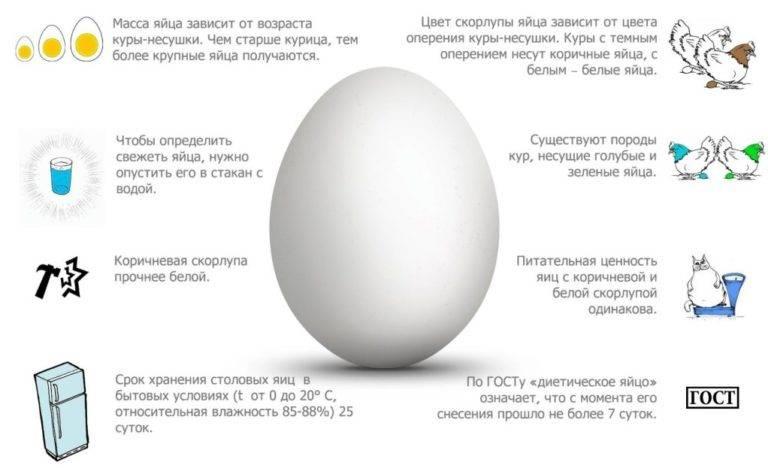 Подскажите какая скорлупа годна для удобрения только ли от сырых яиц?