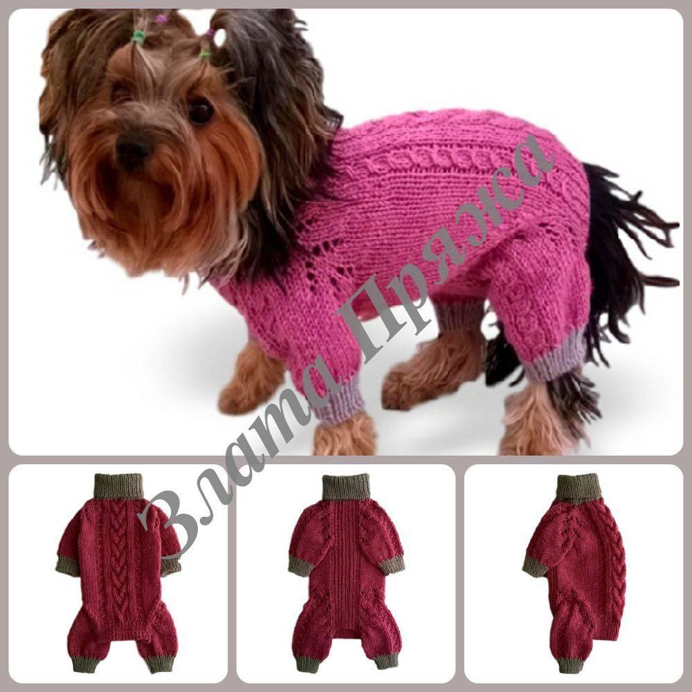 Как начинающему самостоятельно и правильно вязать свитеры для собак