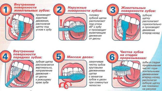 Как чистить зубы электрической зубной щеткой правильно и эффективно?