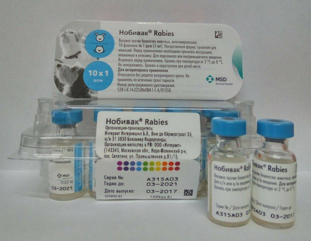 Сколько действует прививка от бешенства у кошек