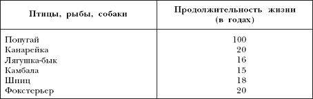О продолжительности жизни русских спаниелей дома: влияющие факторы