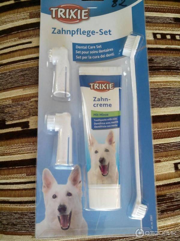Обзор лучших паст, гелей и спреев от зубного камня у собак разных пород