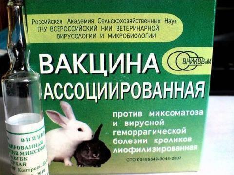Вакцина для кроликов против миксоматоза и вгбк
