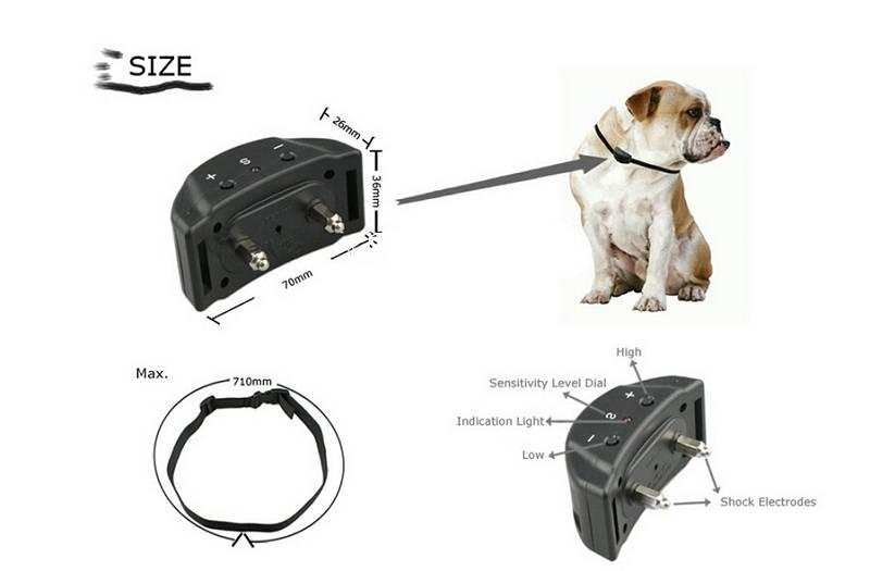 Обзор лучших видов ошейников для щенков и взрослых собак крупных пород