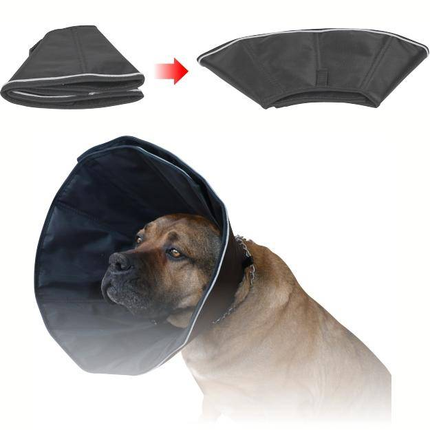 Собаки, защитный воротник для собак, рекомендации по его применению