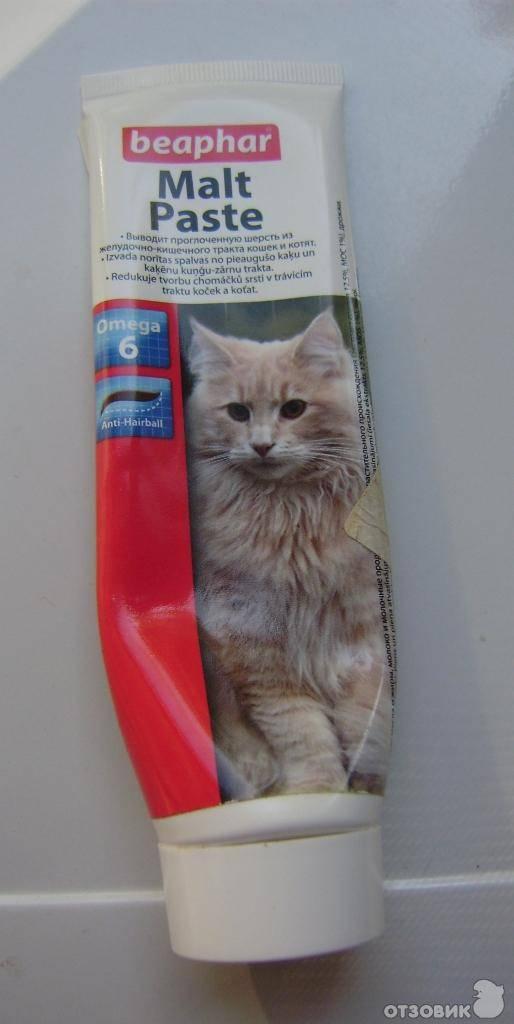 3 лучших пасты для выведения шерсти у кошек из желудка