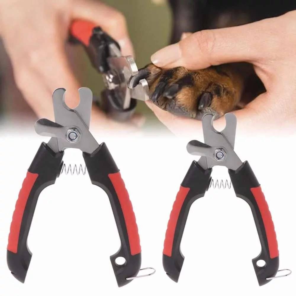 Ножницы для стрижки когтей у кошек: какой когтерез лучше, как пользоваться кусачками или щипцами?