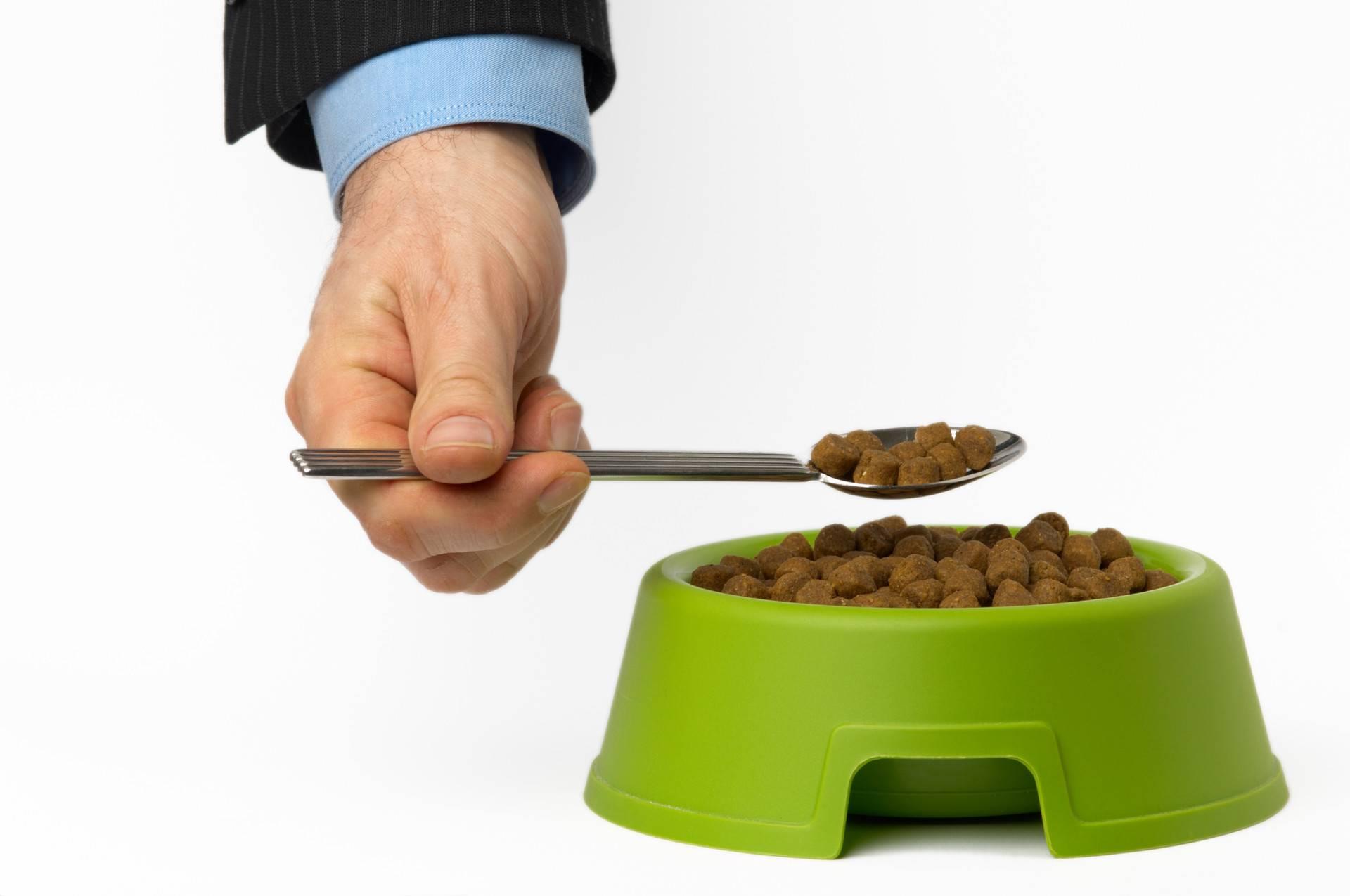 Можно ли человеку есть собачий корм?