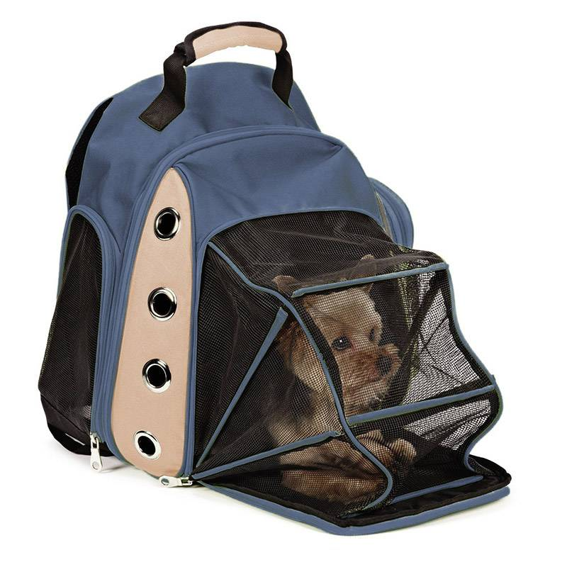 Переноска для собаки для путешествия: видео обзор и наши советы