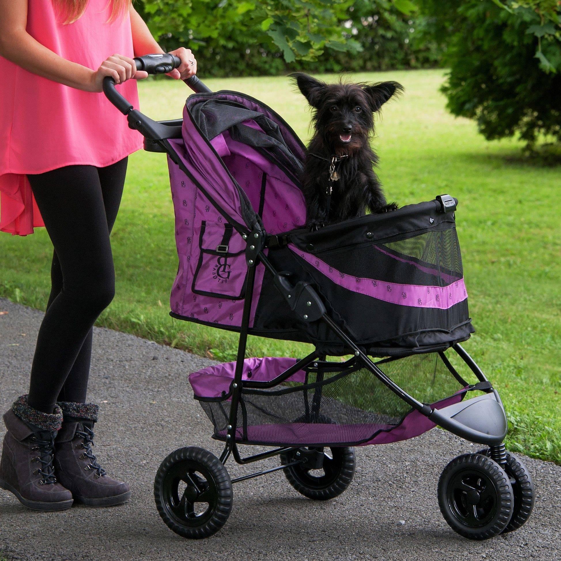 Особенности конструкции инвалидных колясок для собак: разновидности и характеристики