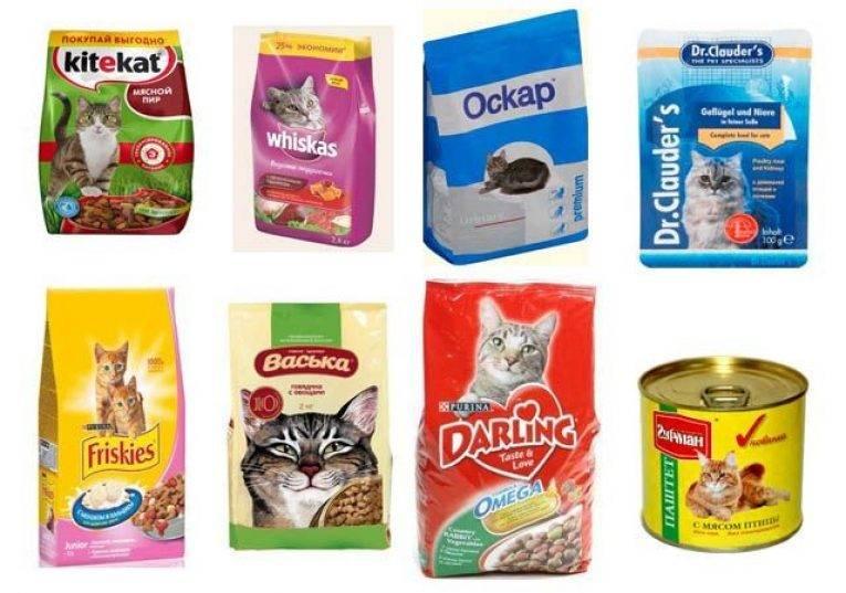 Рейтинг кошачьих кормов