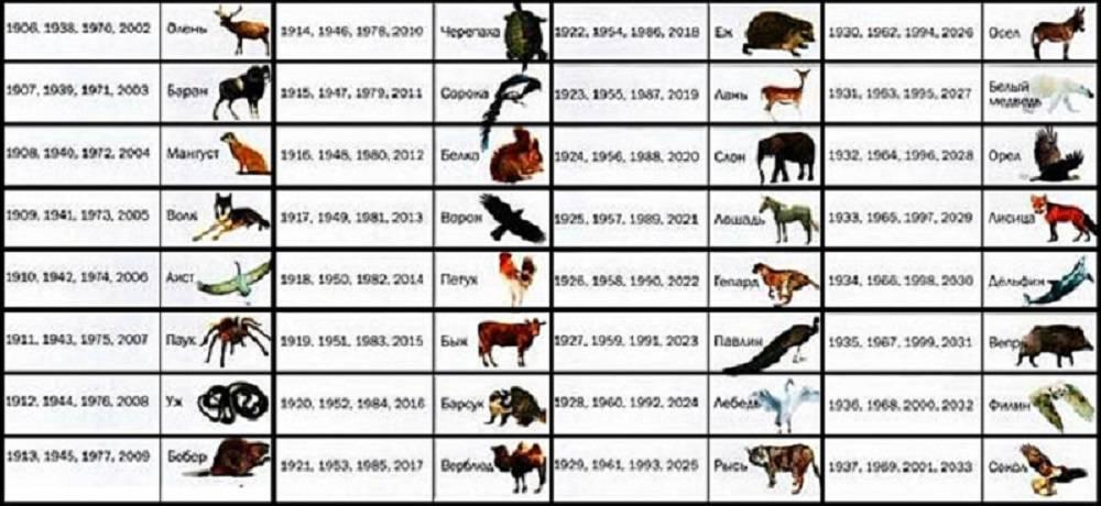 На каких животных похожи женщины разных знаков зодиака