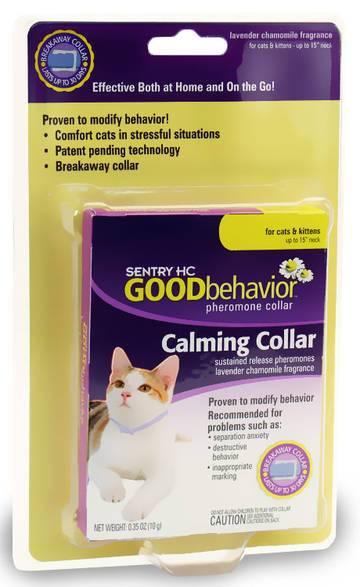Успокоительное для кошек:  список средств и когда применять