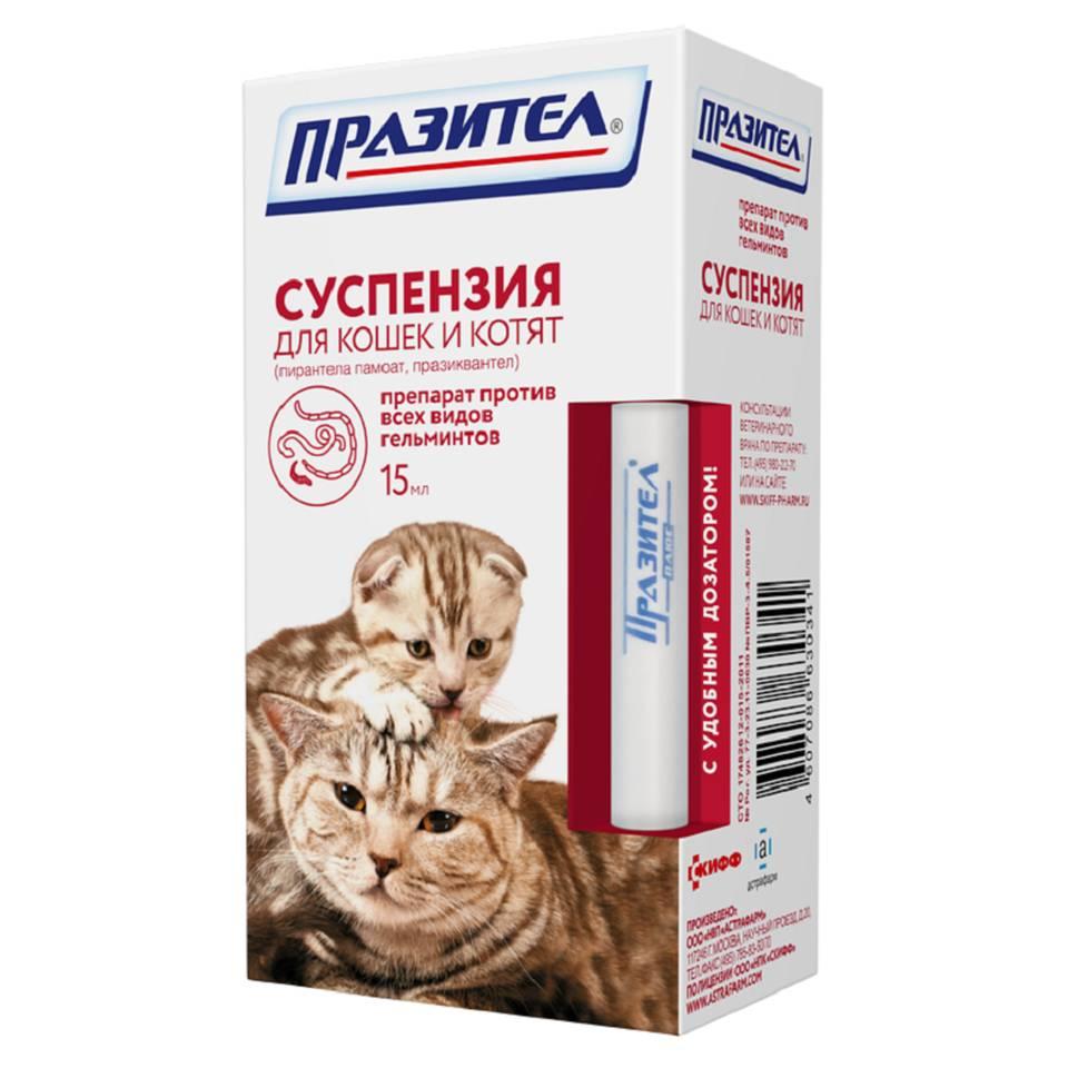Инструкция к суспензии для кошек и котят «празител» и таблетированной форме препарата