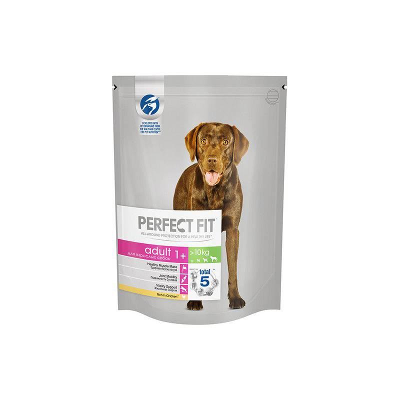 Корм перфект фит для собак: состав и характеристика готового питания